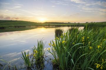 liliowe jezioro wśród wiosennych pól