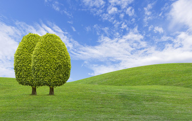 Trees on green grass hill