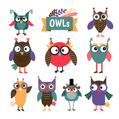 Owl coloured icons set. Different colours cute owls with glasses. Vector illustration