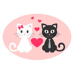 romantic cute couple kitten white and black sitting
