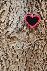 Heart on bark of a tree. Copy space for text. Valentines heard, valentines card.