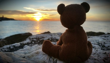 Teddy Bear with sunrise