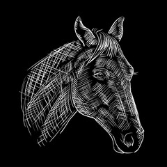 sketch of a horses head