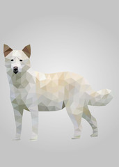 Canaan dog Standing and Waiting vector