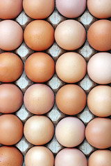 Chicken brown eggs in a tray, the top view.