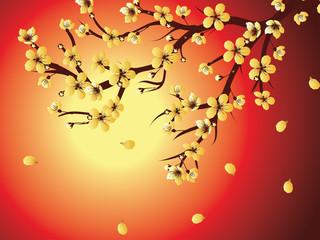 Decorative Sakura Background