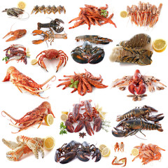 Deurstickers Schaaldieren seafood and shellfish