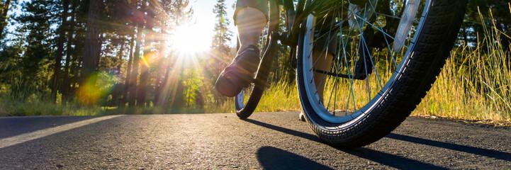 Bike on the asphalt path illuminated by sun