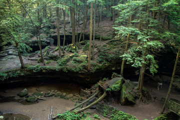 Saving The Hemlocks. Ohio's Hocking Hills State Park is leading the way in treating a disease that is decimating America's Hemlock trees in other areas of the country.