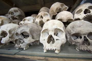 Skulls and bones in Killing field