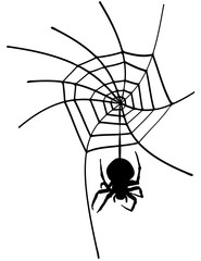 The spider in the web. Vector element.