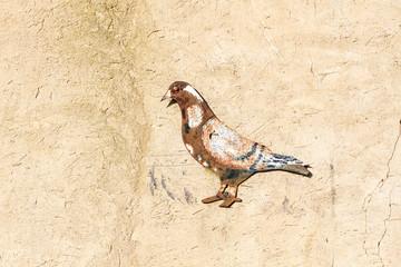 Dibujo de paloma en pared de palomar, Villarrín de Campos. Reserva Natural de Las Lagunas de Villafáfila, Zamora.