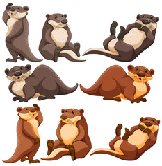 Cute otters in different actions