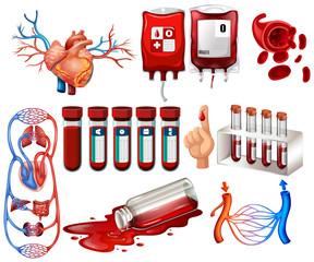 Human blood and organs