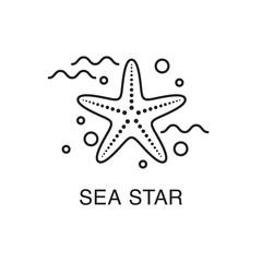 Line art sea star (starfish) flat icon. Summer vacation concept.