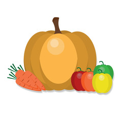 Autumn vegetables vector illustration