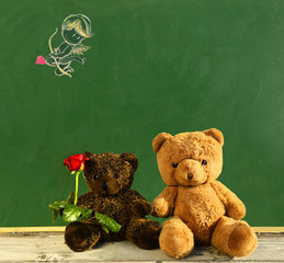 Cupid for teddy bears couple in love