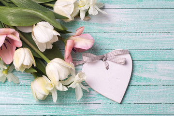 Fresh  spring white and pink tulips flowers and decorative heart