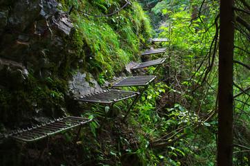 Obraz Trail along the Hornad river, Slovak Paradise - fototapety do salonu