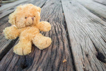 bear doll on wood table background