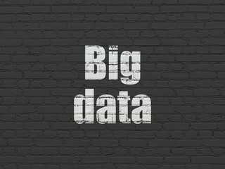 Information concept: Big Data on wall background