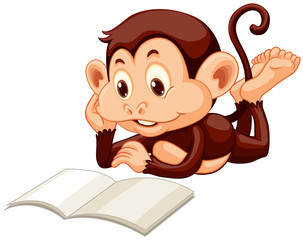 Little monkey reading a book