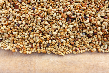 Coffee beans dried in the sun, Coffee beans raked out for drying prior to roasting