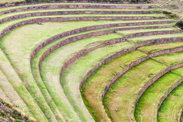 Inca agricultural terraces in Pisac, Sacred Valley, Peru