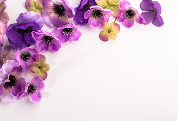 Floral frame with beautiful violets flowers selected on white background