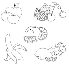 Set of fruits and berries in black and white colors