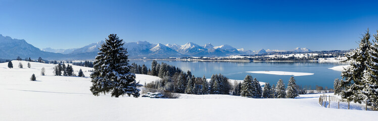 Wall Mural - Panorama Landschaft vom Forggensee im Winter