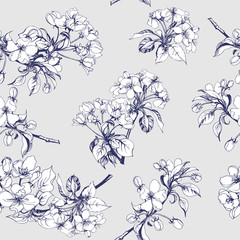 Seamless background with Apple flowers. Vector illustration
