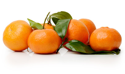 Satsumas on a white background