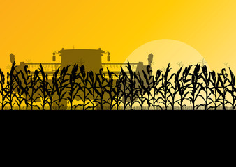 Corn field harvesting with combine harvester yellow abstract rur