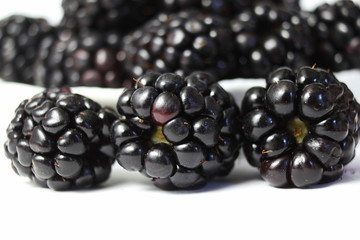 blackberry fruit closeup