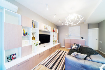 A big Modern living room with TV