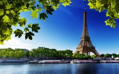 Ingelijste posters Eiffeltoren paris eiffel france river beach trees