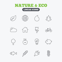 Nature and Eco icons. Trees, rose flower.