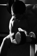 Handsome man lifting weight to tone his biceps in a sports gym.