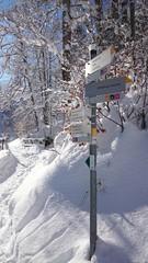 Beautiluf Winter