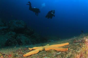 Scuba diving exploring coral reef Similans Thailand