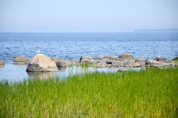 Ostseeküste Lahemaa Nationalpark / Estland
