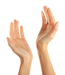 Human hands isolated on white background
