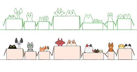 cats in boxes in a raw