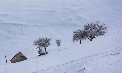 Winter mood in a village