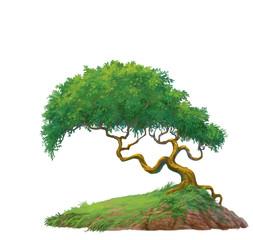 a tree on mound