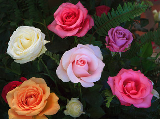 close up beautiful variety color of blooming roses flower bouque
