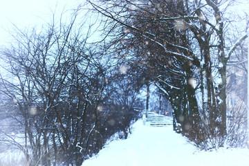 alley pathway park winter