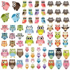 Printed roller blinds Owls cartoon Funny Owls set