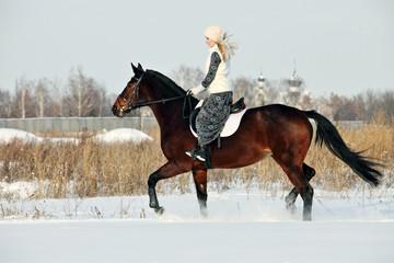 Equestrian riding horse on a field in winter, in the background a winter countryside